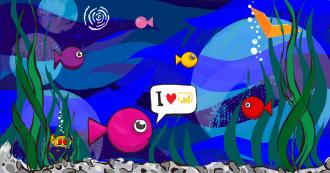 Как сделать рыбок в Power BI отчёте