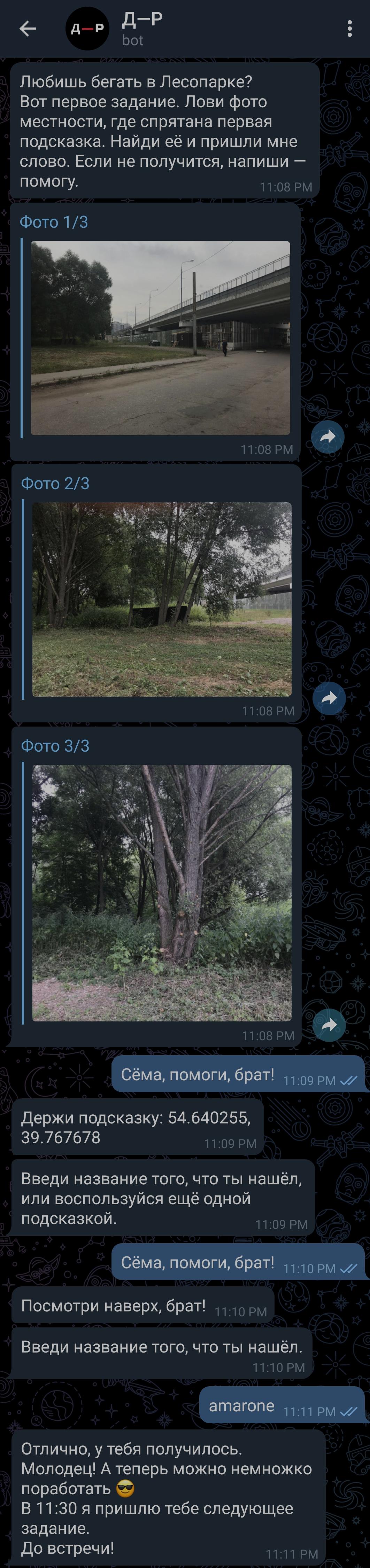координаты дерева